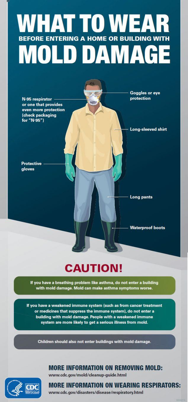 CDC graphic suggesting items to wear during mold cleanup